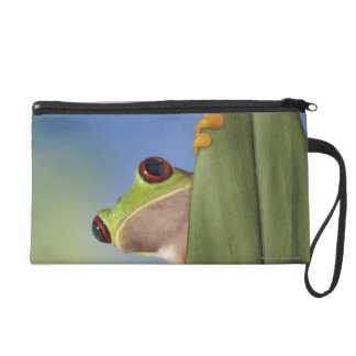 Red Eyed Tre Frog Peeking From Behind a Leaf Wristlet