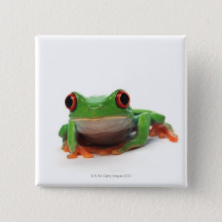 Red eyed tree frog 2 button