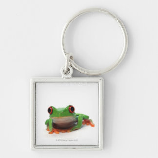 Red eyed tree frog 2 keychain