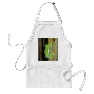 red-eyed tree frog adult apron