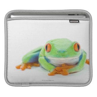 Red-Eyed Tree Frog (Agalychnis Callidryas) 2 iPad Sleeve