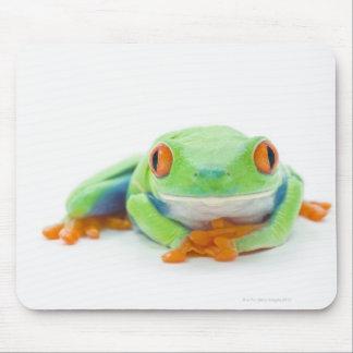 Red-Eyed Tree Frog (Agalychnis Callidryas) 2 Mouse Pad