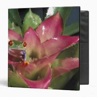 Red-eyed tree frog Agalychnis callidryas) Vinyl Binder