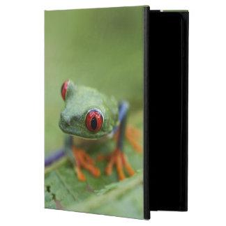 Red-eyed tree frog (Agalychnis callidryas) iPad Air Case