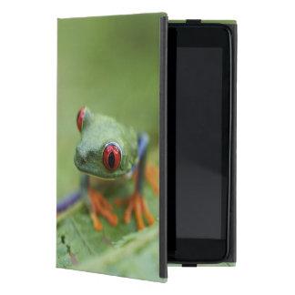 Red-eyed tree frog (Agalychnis callidryas) iPad Mini Cover