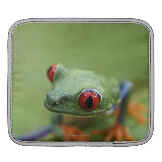 Red-eyed tree frog (Agalychnis callidryas) iPad Sleeve