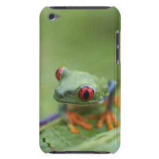 Red-eyed tree frog (Agalychnis callidryas) iPod Case-Mate Case