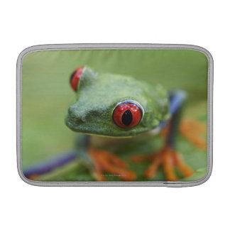 Red-eyed tree frog (Agalychnis callidryas) MacBook Air Sleeve
