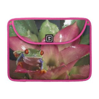 Red-eyed tree frog Agalychnis callidryas) MacBook Pro Sleeve
