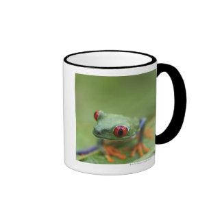 Red-eyed tree frog (Agalychnis callidryas) Coffee Mug