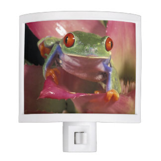 Red-eyed tree frog Agalychnis callidryas) Night Light