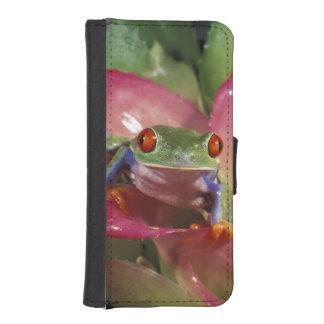 Red-eyed tree frog Agalychnis callidryas) Phone Wallet
