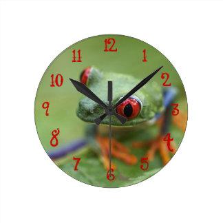 Red-eyed tree frog (Agalychnis callidryas) Round Clock
