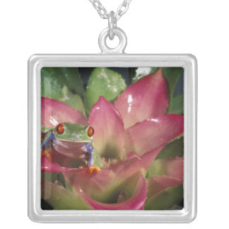 Red-eyed tree frog Agalychnis callidryas) Square Pendant Necklace