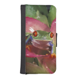 Red-eyed tree frog Agalychnis callidryas) Wallet Phone Case For iPhone SE/5/5s