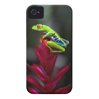 Red-eyed Tree Frog Case-Mate iPhone 4 Case