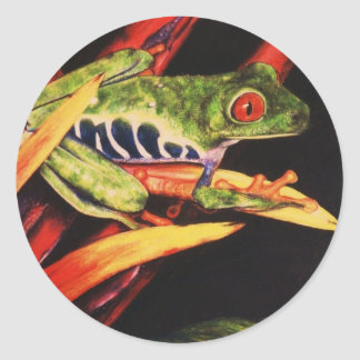 Red Eyed Tree Frog- Color Pencil 1991 Classic Round Sticker