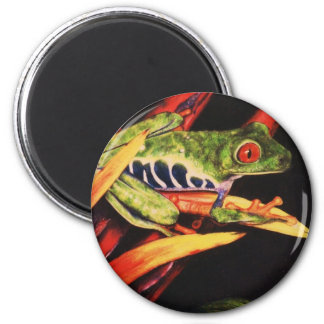 Red Eyed Tree Frog- Color Pencil 1991 Magnet