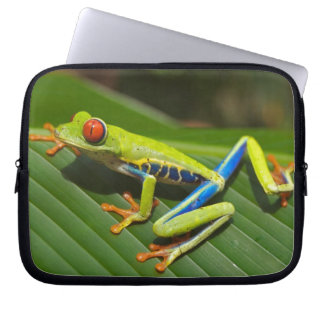 Red eyed tree frog computer sleeves