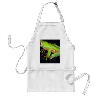 Red-eyed tree frog, Costa Rica Adult Apron