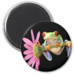 red eyed tree frog fridge magnet