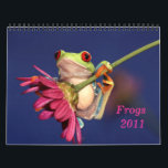 "red eyed tree frog, Frogs 2011 calendar<br><div class=""desc"">13 stunning images of one of the most beautiful creatures on planet earth:the red eyed tree frog (agalychnis callidryas)</div>"