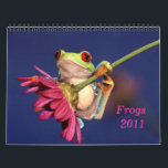 """red eyed tree frog, Frogs 2011 calendar<br><div class=""""desc"""">13 stunning images of one of the most beautiful creatures on planet earth:the red eyed tree frog (agalychnis callidryas)</div>"""