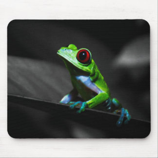 Red Eyed Tree Frog III Mouse Pad