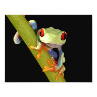 red eyed tree frog 4.25x5.5 paper invitation card