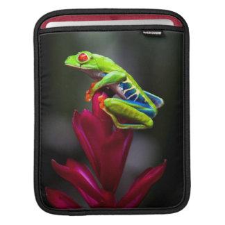 Red-eyed Tree Frog iPad Sleeve
