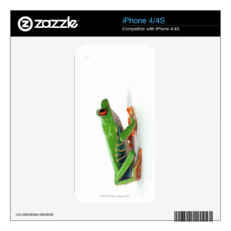 Red eyed tree frog iPhone 4 skin