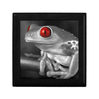 Red Eyed Tree Frog Jewelry Box