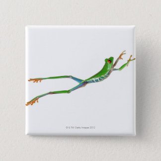 Red eyed tree frog jumping button