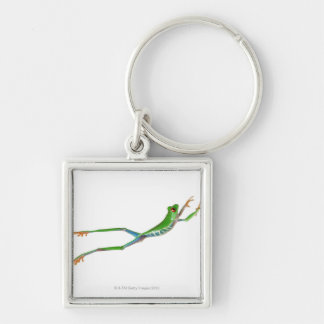 Red eyed tree frog jumping keychain