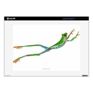 "Red eyed tree frog jumping skin for 15"" laptop"