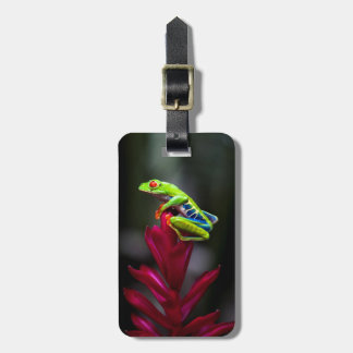 Red-eyed Tree Frog Bag Tags