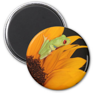 red eyed tree frog refrigerator magnets