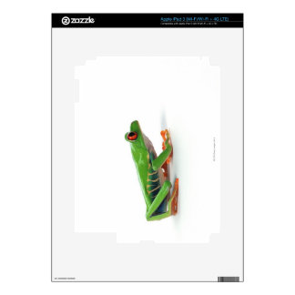 Red eyed tree frog skins for iPad 3