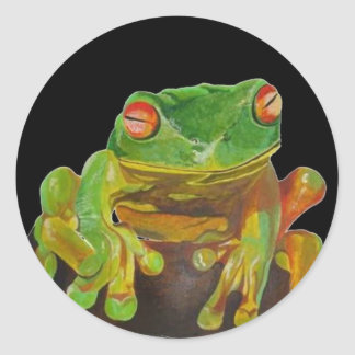 Red Eyed Tree Frog. Stickers