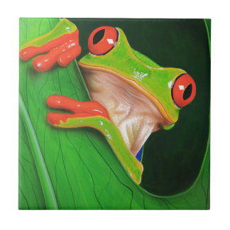 Red Eyed Tree Frog Small Square Tile