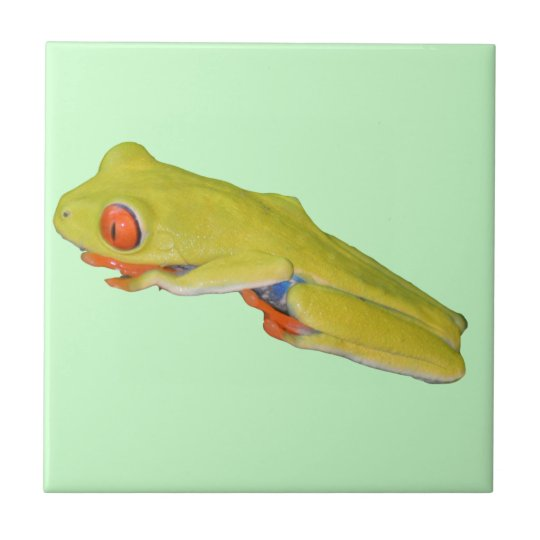Red-Eyed Tree Frog Tile