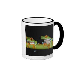 Red-eyed Tree Frogs (Agalychnis callidryas) Mug