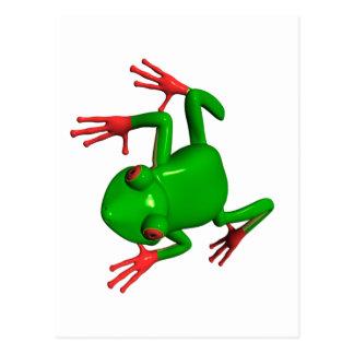 Red Eyed Tree Frogs Agalychnis callidryas Postcard