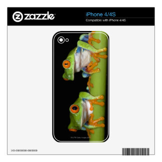 Red-eyed Tree Frogs (Agalychnis callidryas) Skins For The iPhone 4S