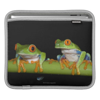 Red-eyed Tree Frogs (Agalychnis callidryas) Sleeves For iPads
