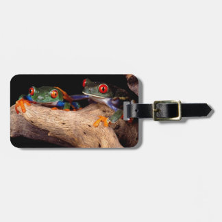 Red Eyed Tree Frogs Tags For Bags