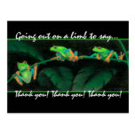Red-Eyed Tree Frogs Thank you! Post Card
