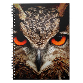 Red Eyes Eagle Owl Notebook