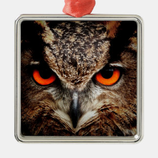 Red Eyes Eagle Owl Ornaments