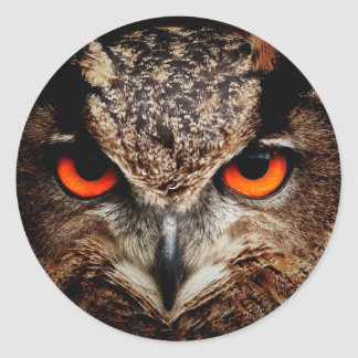 Red Eyes Eagle Owl Stickers